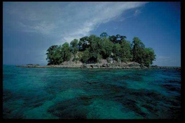 Картинки по запросу Национальный парк Пулау Тига