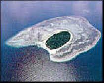 Sipadan dive center pulau sipadan sabah malaysia - Sipadan dive centre ...